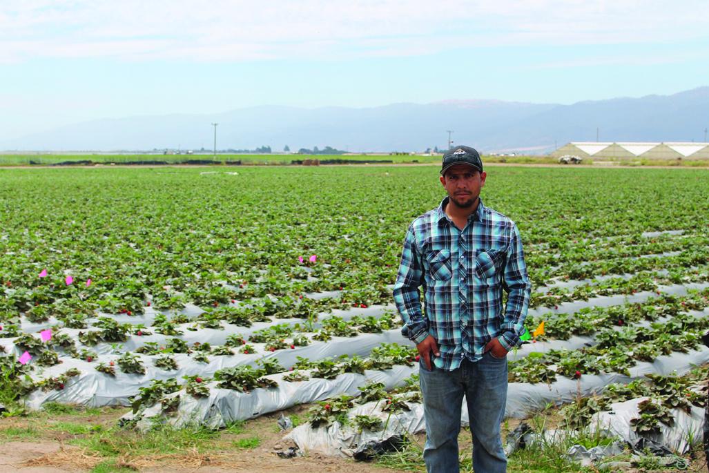 Bucio Organic Farms